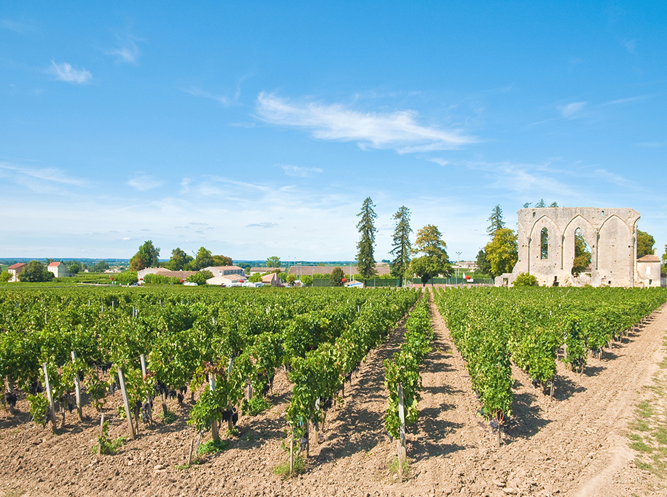 Accessible Holiday Rentals St Emilion - Disabled holidays