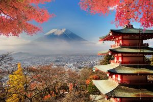 Accessible Holiday Rentals Tokyo - Disabled holidays