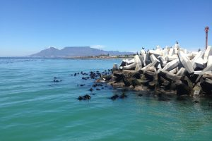 Table Mountain-Accessible-Cape Town