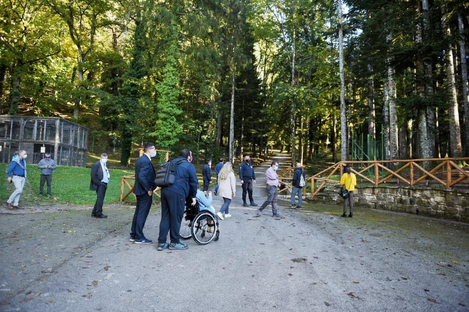 Accessible Trail Through The Nature Reserve