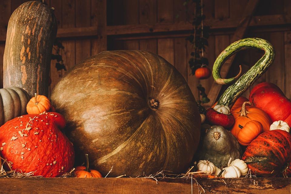 pumpkin-3698130-960-720